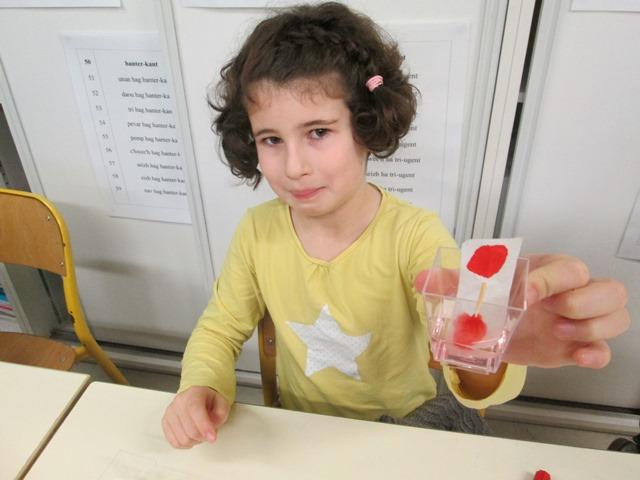 CE1/CE2 Bilingue : Les Petits Débrouillards