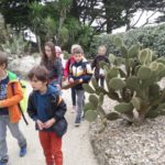 A la recherche des plantes dans le jardin Delasselle