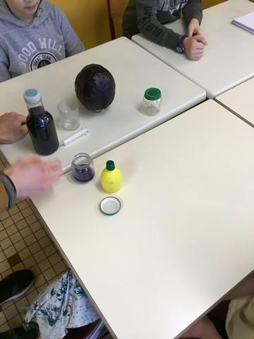 CE2/CM1/CM2 : Des sciences en classe
